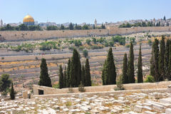 Graves on the Mount of Olives Royalty Free Stock Image