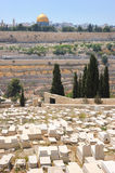 Graves on the Mount of Olives Royalty Free Stock Photo