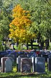 Graves of Notre-Dame-des-Neiges Cemetery. MONTREAL CANADA OCTOBER 11 2015: Graves of Notre-Dame-des-Neiges Cemetery with colorful autumn trees. Is the largest royalty free stock photo