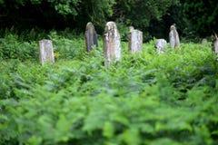 Graves Royalty Free Stock Photos