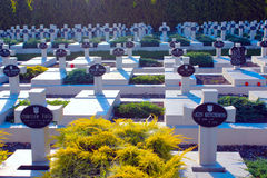 Graves of the Polish warriors on Lychakiv Cemetery Royalty Free Stock Photography
