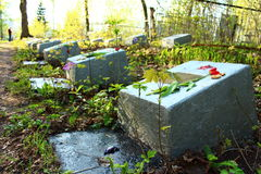 Graves of soldier. Memorable graves of soldiers of the Second World War Stock Photo