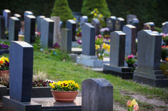 Graves in spring Royalty Free Stock Photos