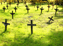 Graves in springtime Stock Photography
