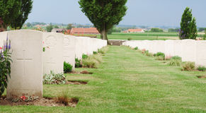 Graves, Tyne Cot cemetery, Passchendaele Royalty Free Stock Image
