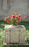 Gravestone with flowers Stock Images
