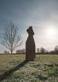 Gravestone on Frosted Grass with Tree and Sun Stock Photo