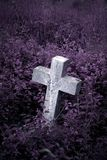 Gravestone in overgrown cemetery. Gravestone in an overgrown cemetery Royalty Free Stock Images
