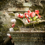 Gravestone with red rose Royalty Free Stock Photography