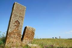 Gravestones in Ahlat. Old Seljuk gravestones in Ahlat near Van lake, Turkey Royalty Free Stock Photos