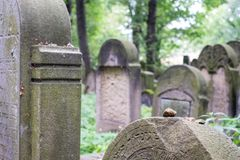 Old gravestones in the New Jewish Cemetery in Miodowa Street, Kazimierz, Krakow, Poland. Gravestones amidst the undergrowth in the New Jewish Cemetery in royalty free stock image