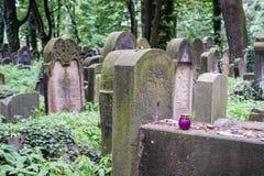 Old gravestones in the New Jewish Cemetery in Miodowa Street, Kazimierz, Krakow, Poland. Gravestones amidst the undergrowth in the New Jewish Cemetery in stock image