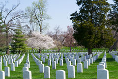 Gravestones at the Arlington Cemetery Stock Photo