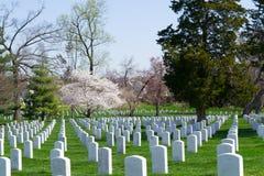 Gravestones at the Arlington Cemetery Stock Photo