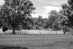 Gravestones in Arlington National Cemetery. Arlington National Cemetery is the most iconic military cemetery in the US Royalty Free Stock Photos