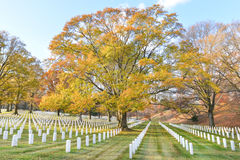 Gravestones in Arlington National Cemetery - Washington DC Royalty Free Stock Photos