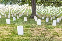 Gravestones on Arlington National Stock Photography