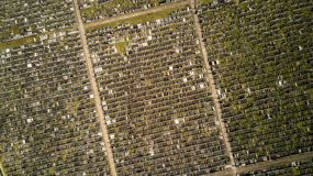 Gravestones and cemetery Aerial view royalty free stock photo