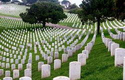 Gravestones in Fort Rosecrans Military Cemetery. Seemingly endless gravestones line the Fort Rosecrans military cemetery in San Diego, California Royalty Free Stock Photography
