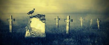 Gravestones i månsken arkivbild