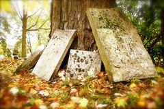 Gravestones Leaning Against a Tree in Autumn. Image in Autumn with orange, red and yellow leaves, conveying a dream, nightmare, or symbol of death, afterlife or stock images