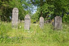 Gravestones at the old cemetery on the Zuiderweg in Hoogeveen Royalty Free Stock Photo