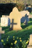 Gravestones with shadows. And daffodils Stock Images