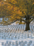 Gravestons in Snow. Gravestones at Arlington National Cemetery after a winter snow storm Stock Image