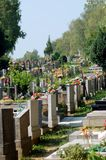 Graveyard. On sunny day. Calm and quiet Royalty Free Stock Photography