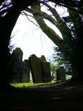 Graveyard. Through trees royalty free stock image