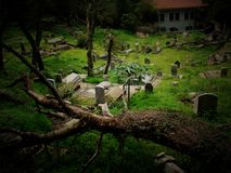Graveyard. Chinese graveyard on slope and grass Stock Photos