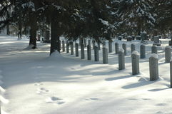Graveyard. Footsprints through a military section of a graveyard in winter, Edmonton Alberta Royalty Free Stock Image