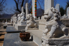 Graveyard. A typical Chinese graveyard in north Beijing Royalty Free Stock Photos