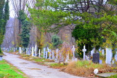 Graveyard alley. Autumn graveyard park.November  2014. Varna city.Bulgaria,resting place,evanescence human life concept Stock Photo