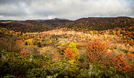 Graveyard Fields on the Blue Ridge Parkway in autumn Stock Photography