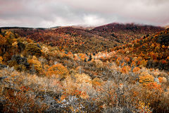 Graveyard Fields on the Blue Ridge Parkway in autumn stock photos