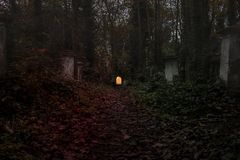 Graveyard in the forest. Stock Photo