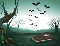 A graveyard in the forest Royalty Free Stock Photography