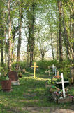 Graveyard in forrest Stock Photography