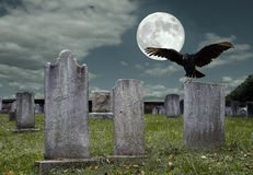 Graveyard with Full Moon. An old graveyard and vulture in the light of the full moon Royalty Free Stock Images