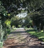 Graveyard. A gravel path through a sunlit graveyard, with headstones either side of the path and overhanging trees Stock Photo