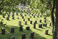 Graveyard with headstones. Facing away from camera royalty free stock images