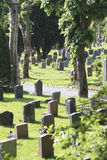 Graveyard with headstones Royalty Free Stock Image