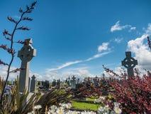 Graveyard in Killadoon county Mayo, Ireland. Graveyard in Killadoon county Mayo in Ireland Royalty Free Stock Photos