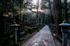 Graveyard of Mount Koya, Japan Stock Image