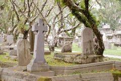 A graveyard Royalty Free Stock Photo