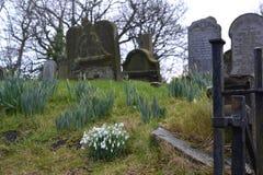 Graveyard Stock Photos