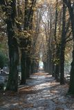 Graveyard road Stock Photo