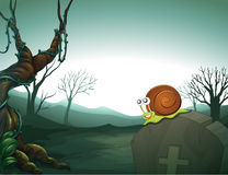 A graveyard with a snail Royalty Free Stock Images