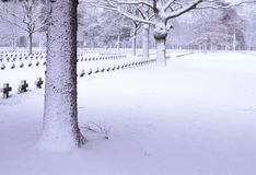 Graveyard in snow Stock Images